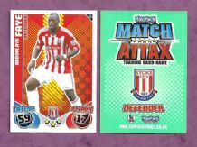 Stoke City Abdoulaye Faye Senegal 239